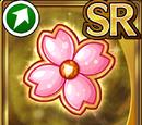 Sakura Bloom (Gear)