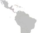 Terminal Velocity: Latin America (Map Game)
