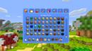 Super Mario Minecraft 2.png