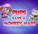 Pups Save a Monkey-naut/Trivia