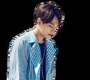 Ahn Han Jae