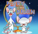 Pinky and the Brain (1995)