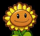 Sunflower (PvZH)