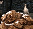 Несокрушимый голубь