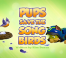 Pups Save the Songbirds/Trivia