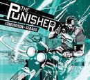 Punisher Vol 10 2