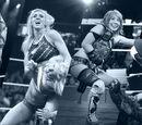 NXT Women's Championship/Gallery