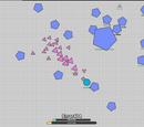 Common Polygons