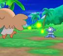 Pokémon Sol y Pokémon Luna/Miscelánea