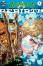 Aquaman Rebirth Vol 1 1.jpg