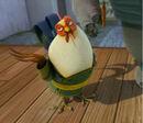 Master-rooster.jpg
