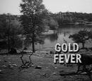 Gold Fever (Rawhide episode)