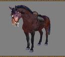 Кінь (Oblivion)