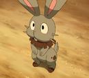 Clemont's Pokémon