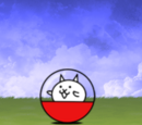 Capsule Cat A (Special Cat)
