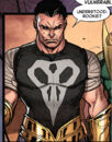 Frank Castle (Earth-51910) from Secret Wars Journal 4 Page 3.jpg