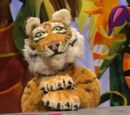 Jared the Tiger