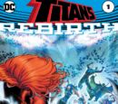 Titans: Rebirth Vol 1 1