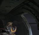 Drugi dowódca eskadry