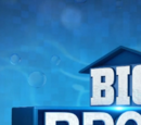 Big Brother 18 (US)