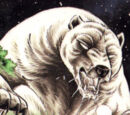 Hybrid Grizzly Bear