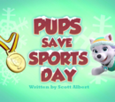 Pups Save Sports Day