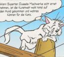Catmembert