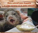 Introducción a la dieta natural en hurones para dummies