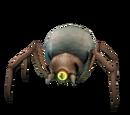 Royal Larva