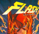 Flash Boek 1: Voorwaarts