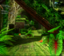 Green Forest/Gallery