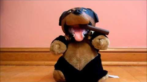 Triumph the Insult Comic Dog Toy - Demo Reel...for me to poop on
