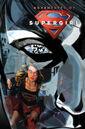 Adventures of Supergirl Vol 1 4 Textless.jpg