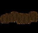 Sargassum (Fauna)