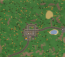 Arena Karten