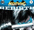 Nightwing: Rebirth Vol 1 1