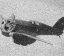 The Cat-Planes
