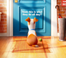 The Secret Life of Pets Wiki