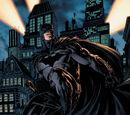 Bruce Wayne (Earth-390281104)