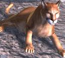 Cougar (2.7)
