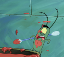 Bikini Bottom University