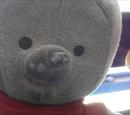 Teddy Tittyqua