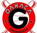Guerreros de Oaxaca