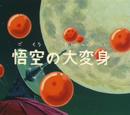 Episodio 13 (Dragon Ball)