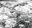 Wald-Territorium