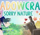 ShadowCraft 2.0/Gallery