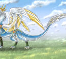 Angelic Dragon Physiology