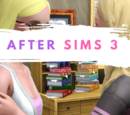 After Sims 3