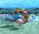 The Greatest Dolphin Race