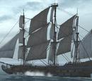 Корабли французской флотилии